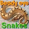 BeadyEye:Snakes