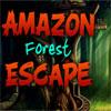 Amazon Forest Escape