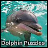 Dolphin Puzzle